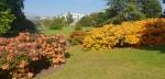 botanicgardens59