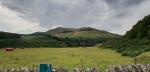 Pentlandhills40